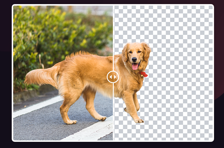Design Beast bacground remover tool
